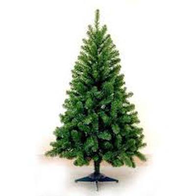 Chọn cây thông trang trí đón mừng Giáng sinh 7