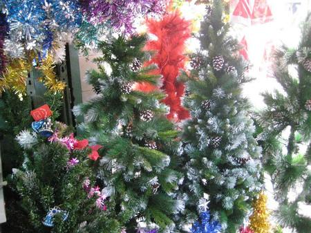 Chọn cây thông trang trí đón mừng Giáng sinh 9