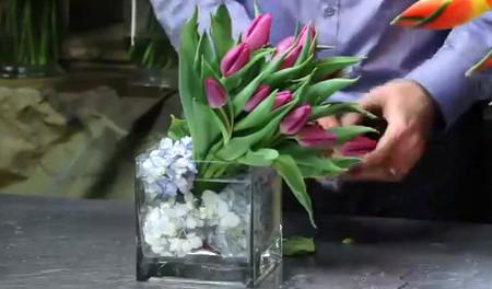 Ý nghĩa và những cách cắm đơn giản của loài hoa tuylip 3