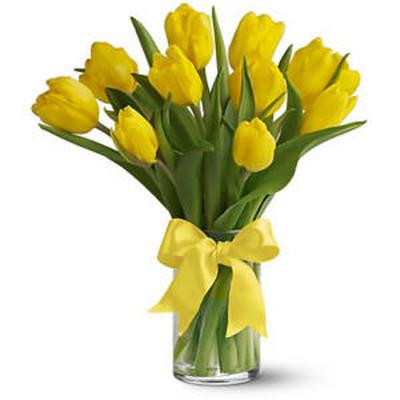 Ý nghĩa và những cách cắm đơn giản của loài hoa tuylip 4