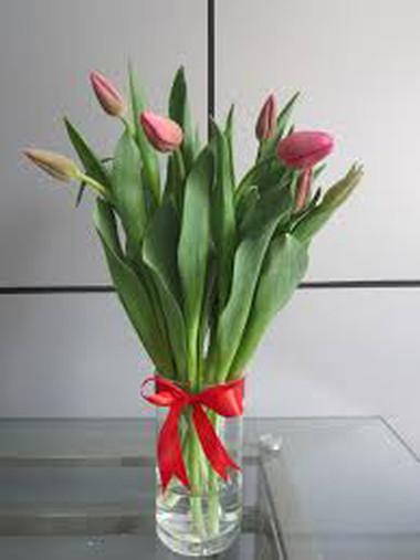 Ý nghĩa và những cách cắm đơn giản của loài hoa tuylip 6