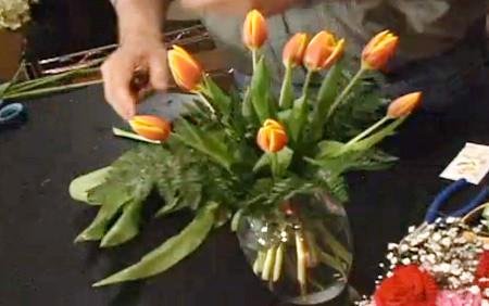 Ý nghĩa và những cách cắm đơn giản của loài hoa tuylip 7