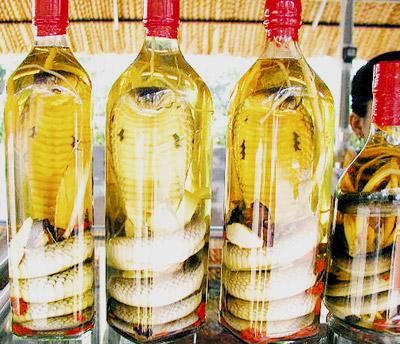 Lợi bất cập hại từ những món rượu bổ tăng cường sinh lý 1