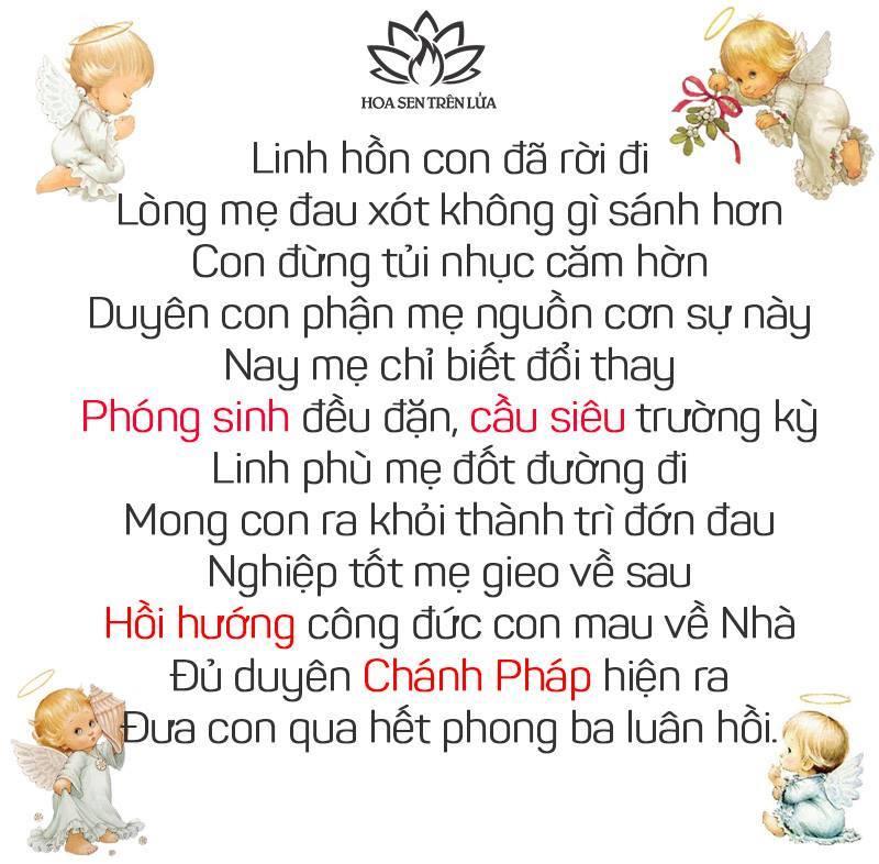CẦU SIÊU VÀ HỒI HƯỚNG CÔNG ĐỨC CHO THAI NHI ĐÃ MẤT 1